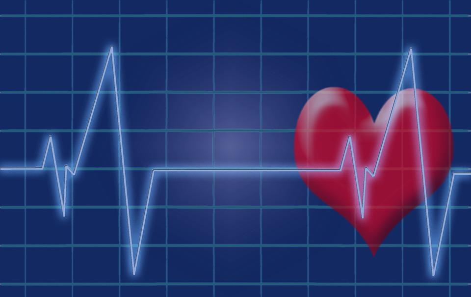 Wist je dit al over het hart?